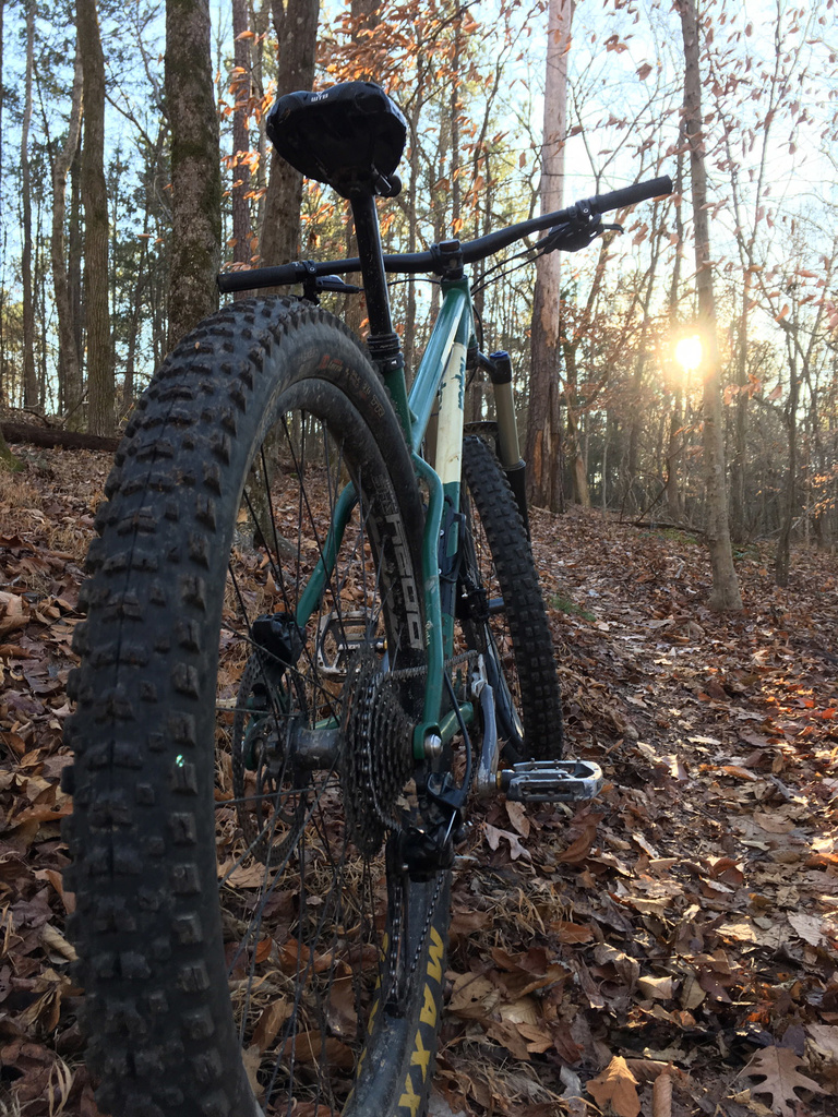 The All Mountain Hardtail Thread. Post up yours.-piglet.jpg