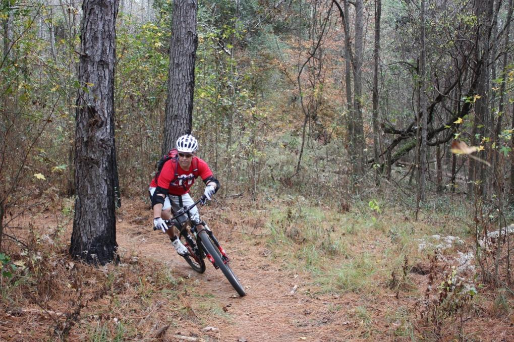 29ers In The Fall-pine-you-2.jpg