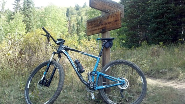 2013 Giant Anthem Advanced X29er 0 Ride Report-pine-hollow.jpg