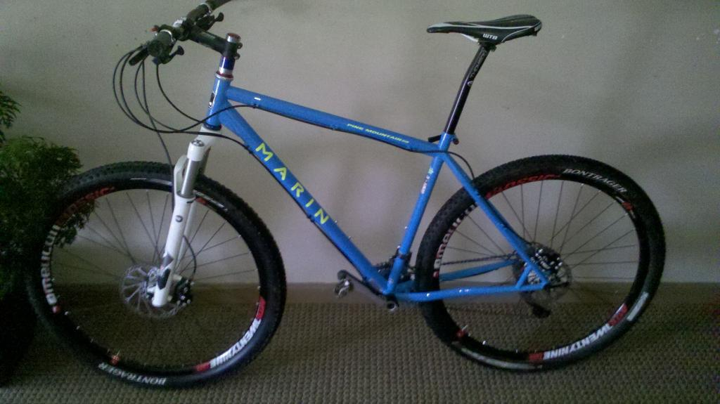 show me your pine mountain 29'ers...-pine-mtn-29er.jpg