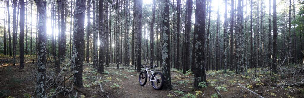 Daily Fat-Bike Pic Thread - 2012-pip_06_227-230.jpg