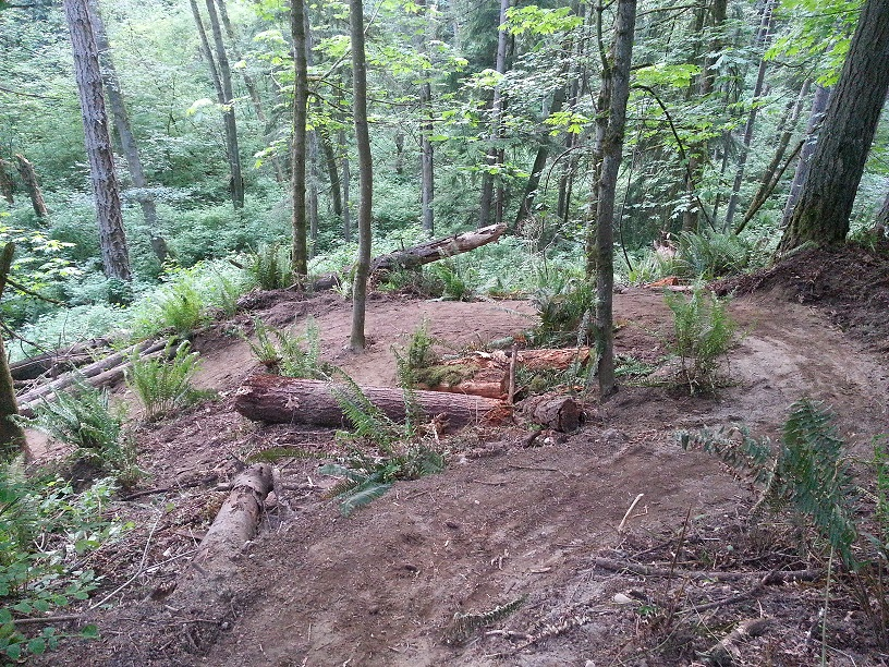 St. Edward State Park - Pipeline Trail Work Parties-pipeline-switchback.jpg
