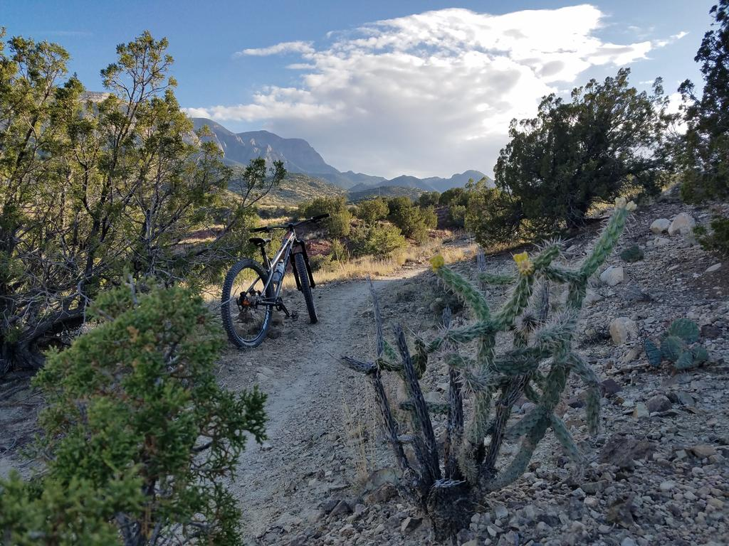 Share your LATEST SS ride...Pics and words-placitas.jpg