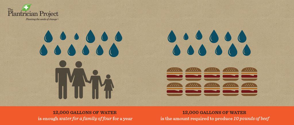 Vegetarian and Vegan Passion-plant-math-water-w1200.jpg
