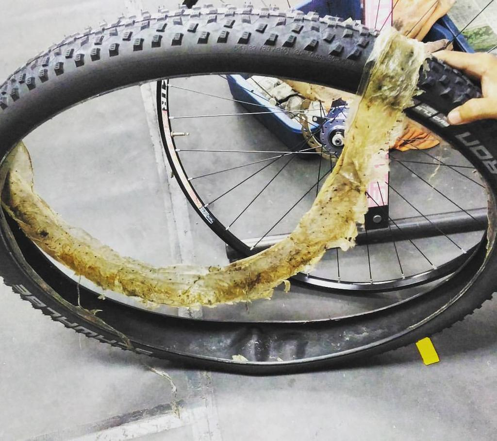 How Toxic are Stans and other sealants for the environment?-please-use-proper-tire-sealant.jpg