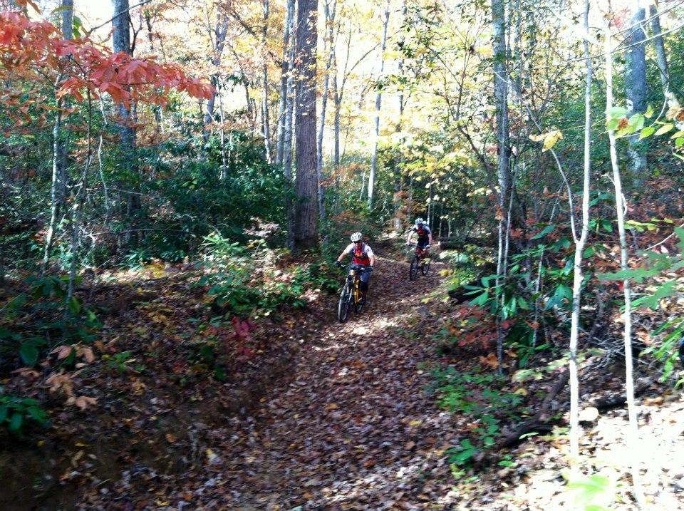 Pisgah Mountain Bike Adventures:  Two Thumps Up!-pmba-ride-10.jpg