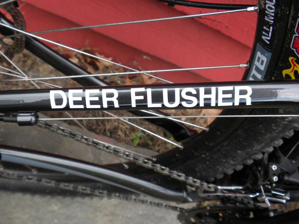 bike names-pn-022.jpg