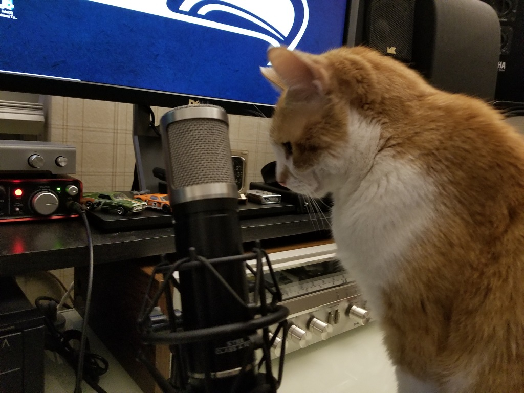 How my Cat feels about everyone being home all day everyday..-podcast.jpg