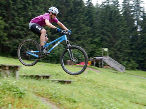 What is the new 29er geo?-pole-evolink-140-29-en_aluminum-long-wheelbase-enduro-mountain-bike_park-600x450.jpg