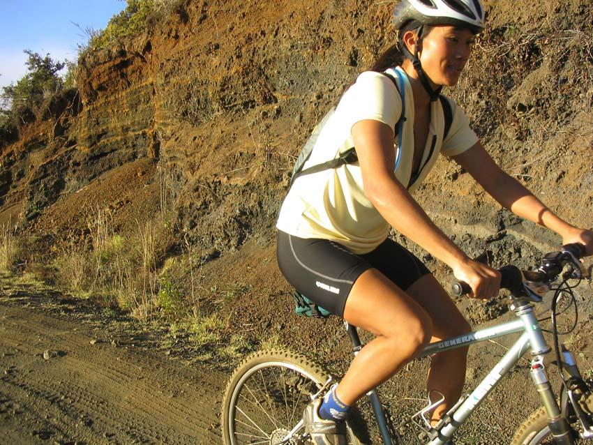 All Our Bikes-poliup.jpg