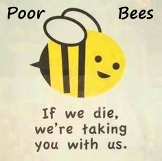 Name:  PoorBees.jpg
