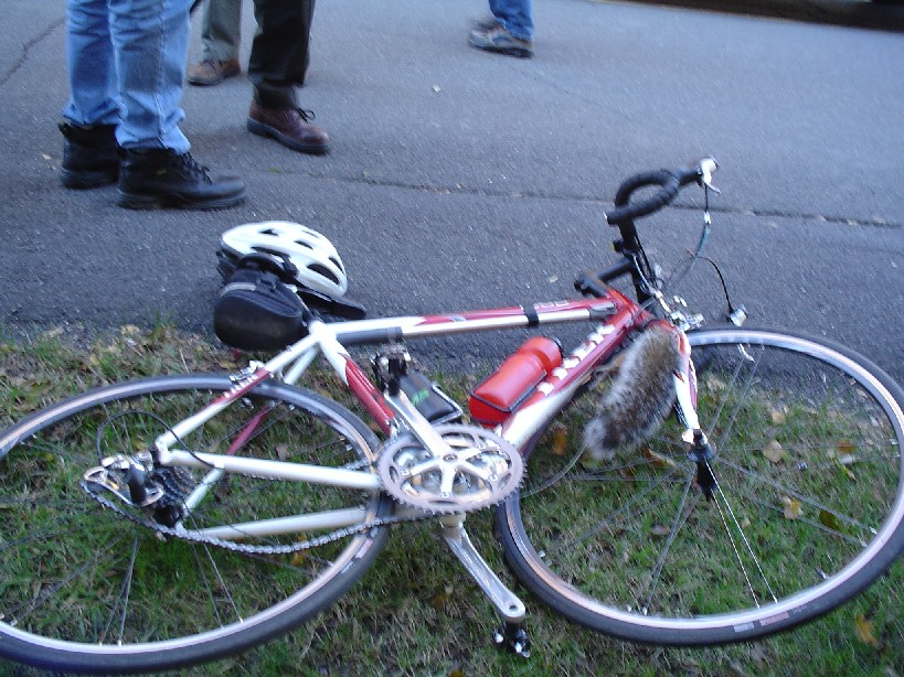 Dumb/silly things cyclists have done-poorsquirrel_1.jpg