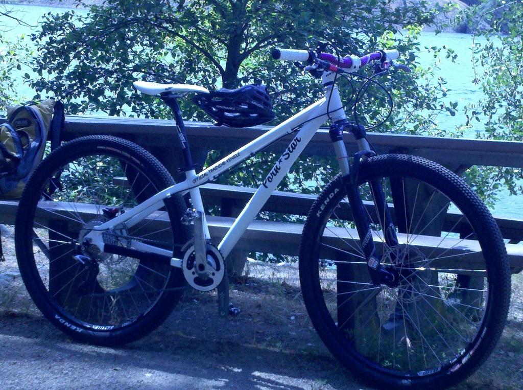 New Bikesdirect Gravity 29Point1?-pornstar1.jpg
