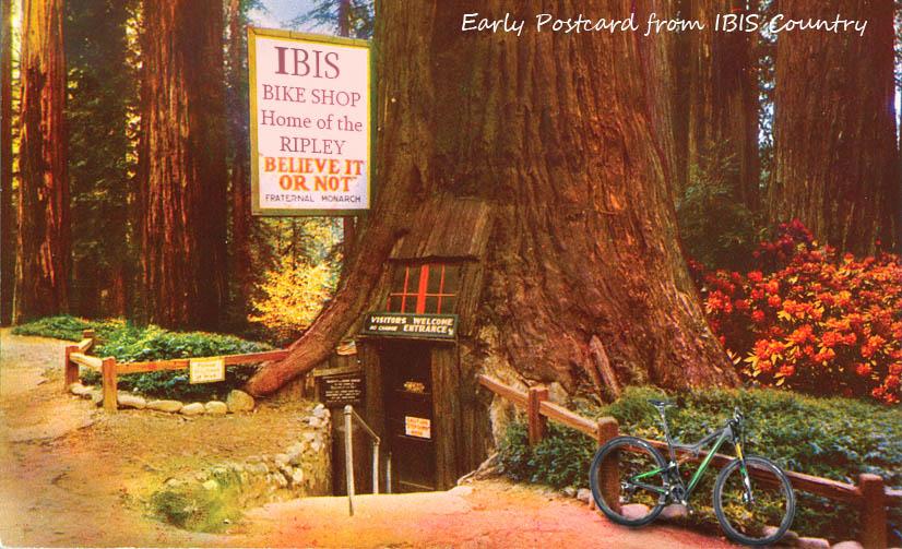 Ibis Customer Service is AWESOME-postcard-rip.jpg
