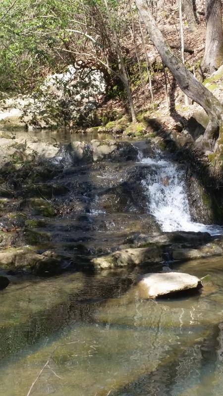 Charlotte area trails-poston2-450x800-.jpg