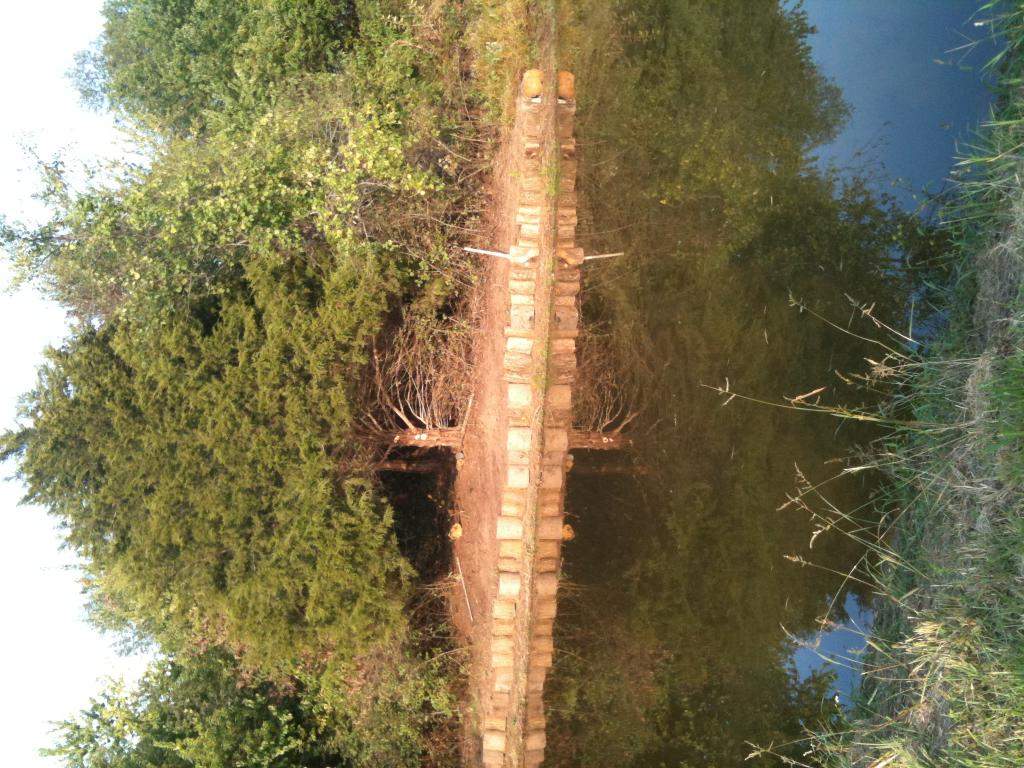 Flat land trails on my property-open to suggestions!-power-poles-bridge-pond.-002.jpg