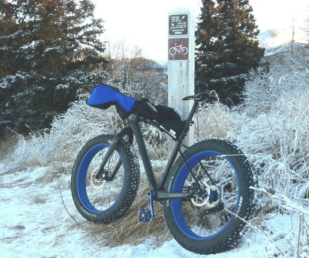 Your dream bike. How do you dream you'd get it?-powerline2.jpg