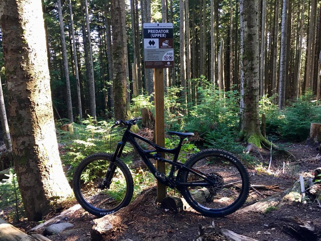 Bike + trail marker pics-pred1.jpg