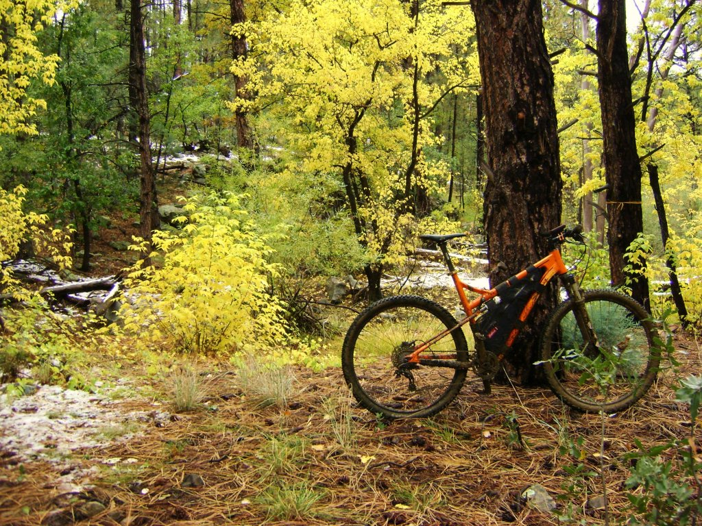 AZ Photo Friday - Oct. 11th - Coconino 250 Edition-prescott-oct-13-015.jpg