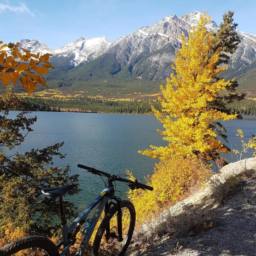 XC Riding in Jasper, Alberta-pryamid-fall-bike.jpg