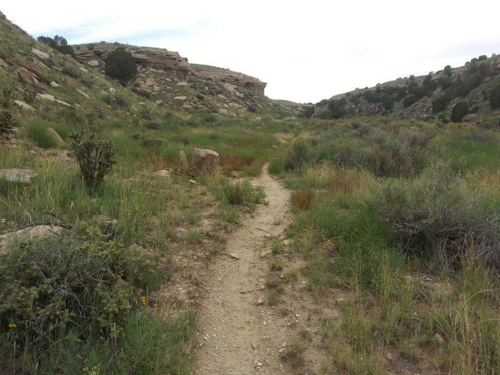 Pueblo-welcome to the jungle-pueblo2.jpg