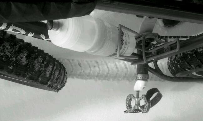 Daily fatbike pic thread-pugs-227.jpg