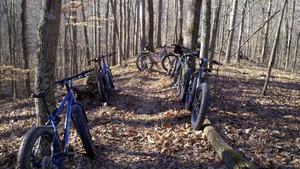 Ohio Fat Bike meet up Sunday-pugs.jpg