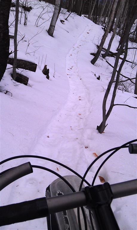 Grooming for fatbikes-pugs-pale-ale-1-11-13-medium-.jpg