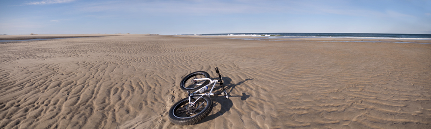 Beach/Sand riding picture thread.-pugs%40thebeach_1.jpg