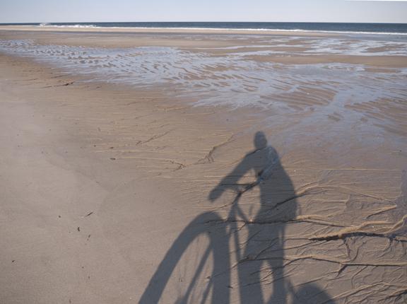 Beach/Sand riding picture thread.-pugs%40thebeach_5.jpg