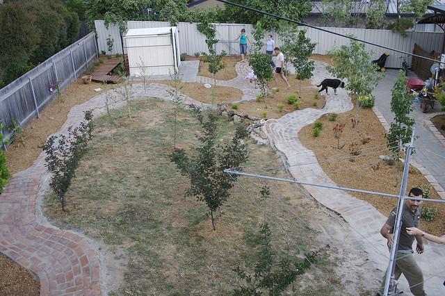 The Backyard Pump Track-pumptrack.jpg