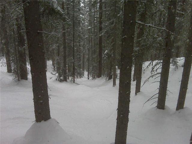Ski or MTB?!?!  Tough Choices-purgatory.jpg
