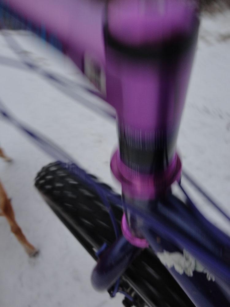 Bikejor thread!-purple.jpg