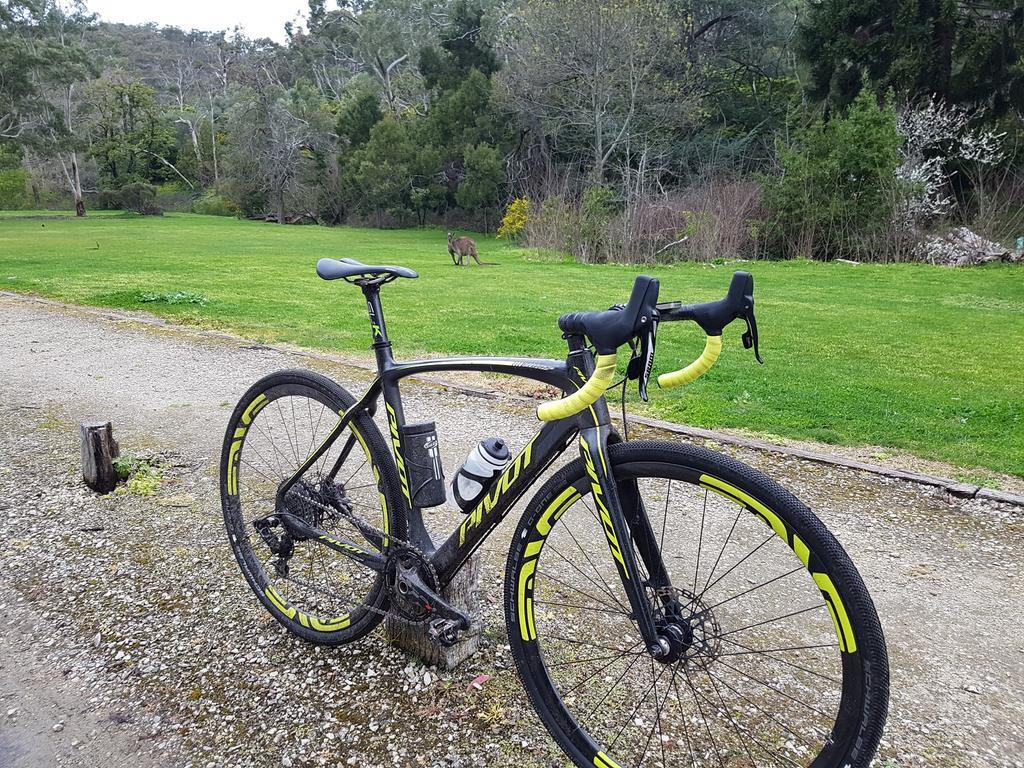 Post your 'cross bike-pv5.jpg