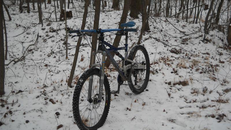 Roaring Creek Snow-qascxv.jpg