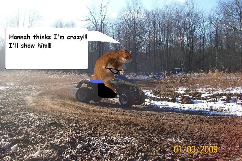 Cross training with Motos?-quadzilla2.jpg