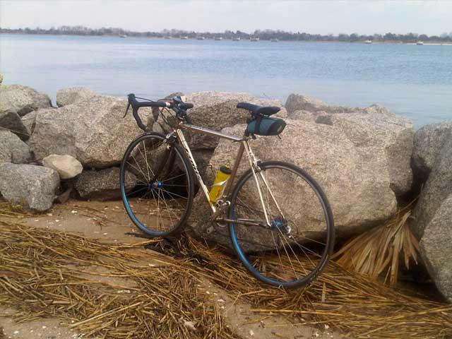 Post Pictures of your Steel Bikes!-quest_in_savannah.jpg