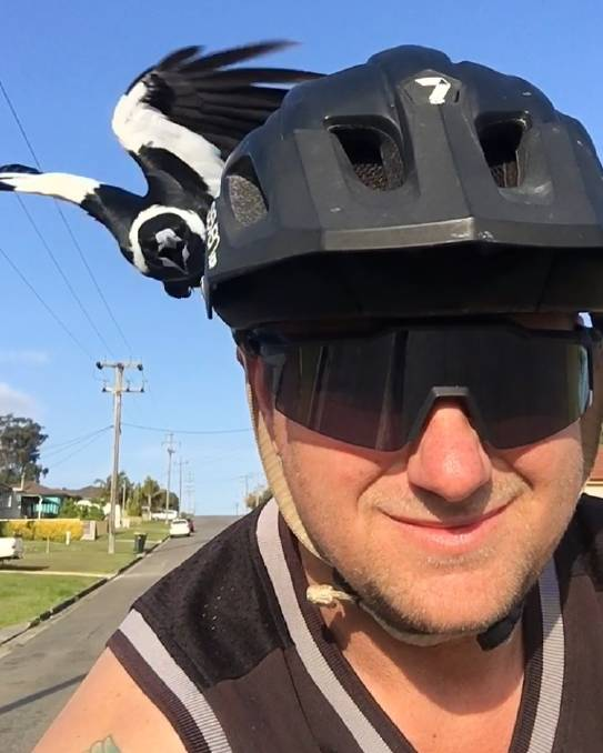 Biking Australia? Beware of the MAGPIE!-r0_0_750_938_w1200_h678_fmax.jpg