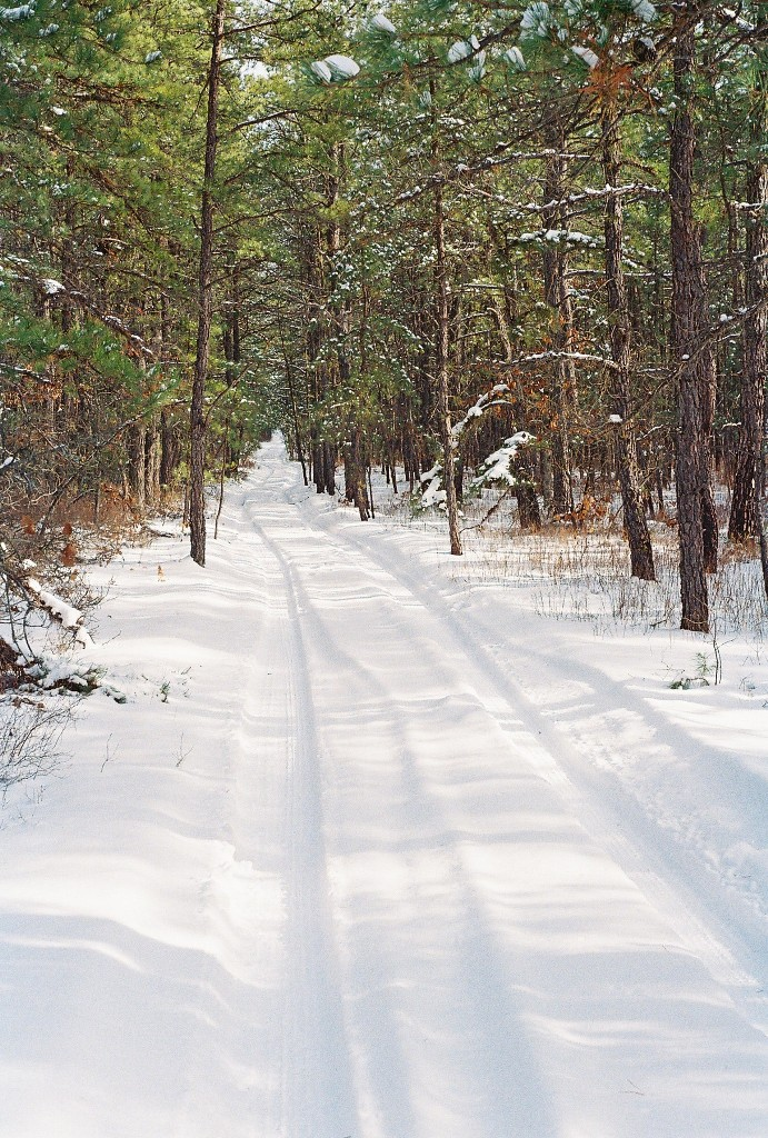 Groomed Trails Yes or No?-r1-05062-0005.jpg