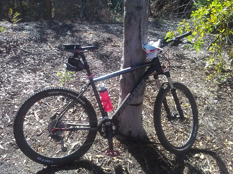 What did You do today on your mountain bike?-railtrail5sm.jpg