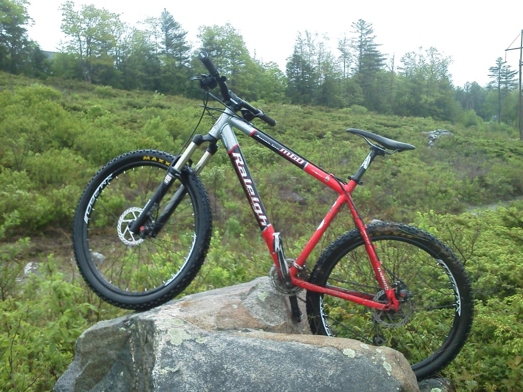 2013 Reba Rl/RLT with a maxle??? Is it possible to get one?-raleigh-6.jpg