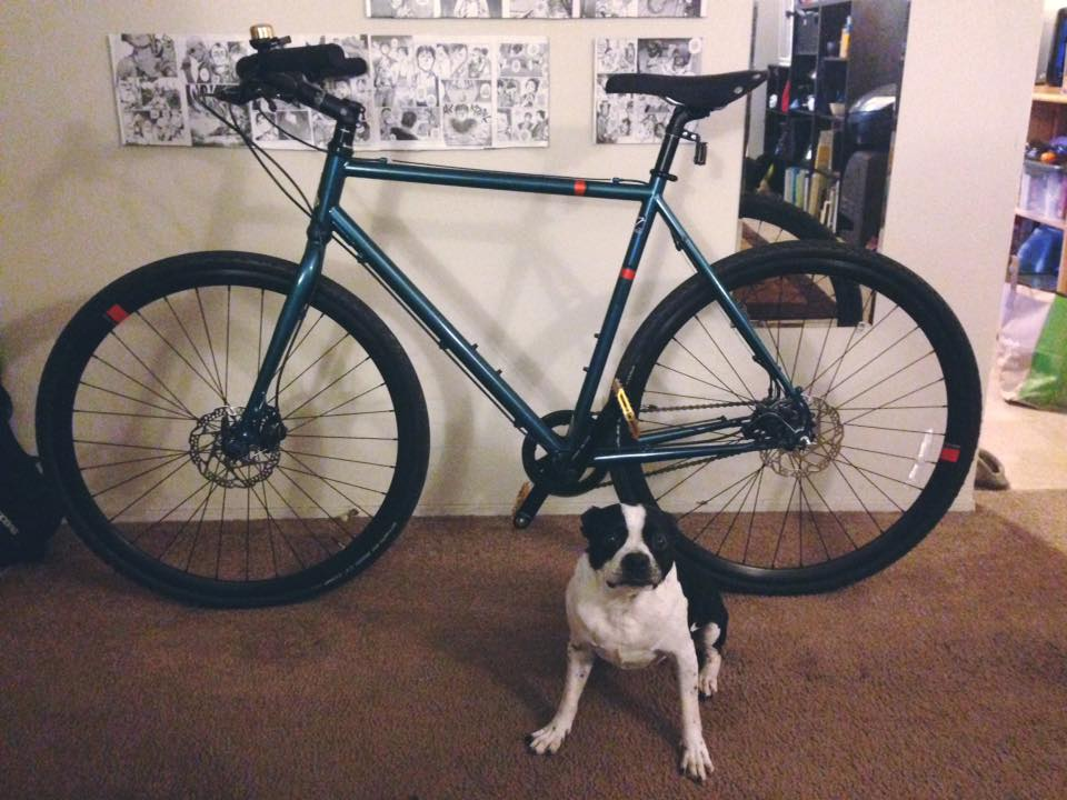 Bike anthology - let's hear about bikes you've owned-raleigh.jpg