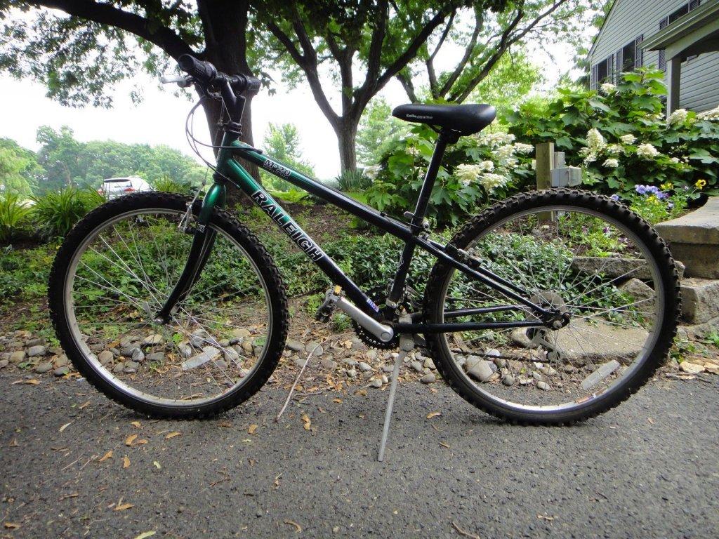 Single-Speed Bike for Kids-raleigh-m20-ebay.jpg