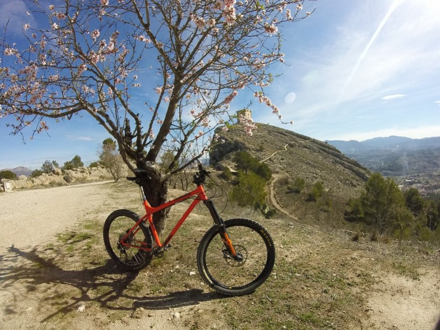 The All Mountain Hardtail Thread. Post up yours.-ramones-al-castell.jpg