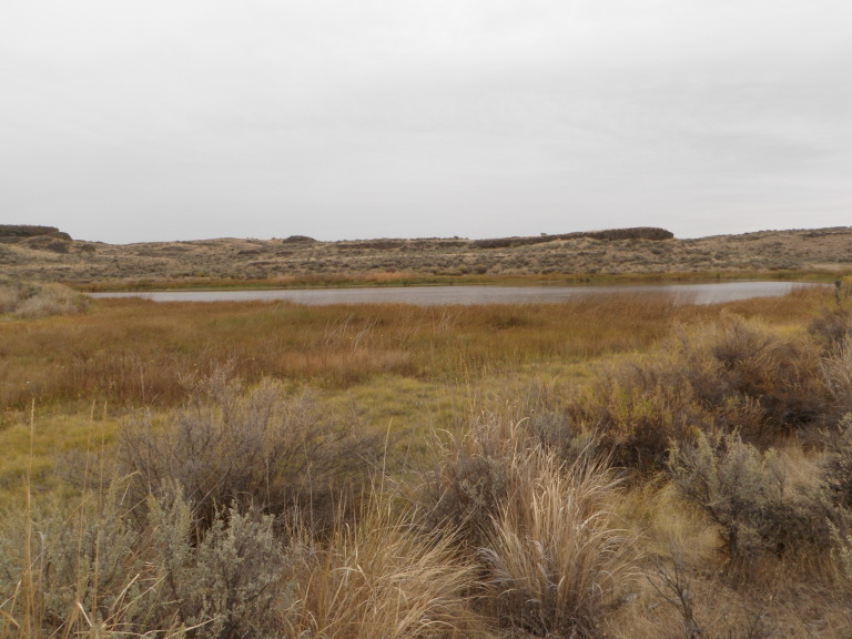 Moses Lake Area Trails-ranch-trail-lake_a.jpg