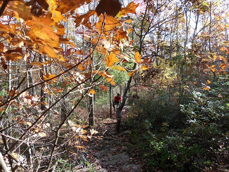 fiveandonehalfhours @ Rattling Creek-rattlin-crik-10-17-10-001.jpg