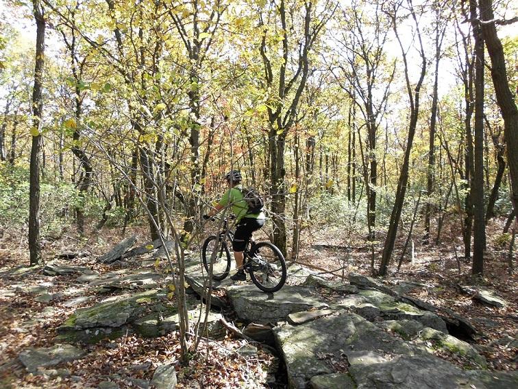 fiveandonehalfhours @ Rattling Creek-rattlin-crik-10-17-10-039.jpg