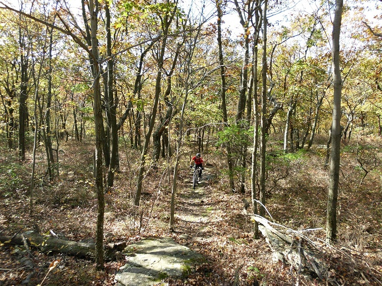 fiveandonehalfhours @ Rattling Creek-rattlin-crik-10-17-10-041.jpg