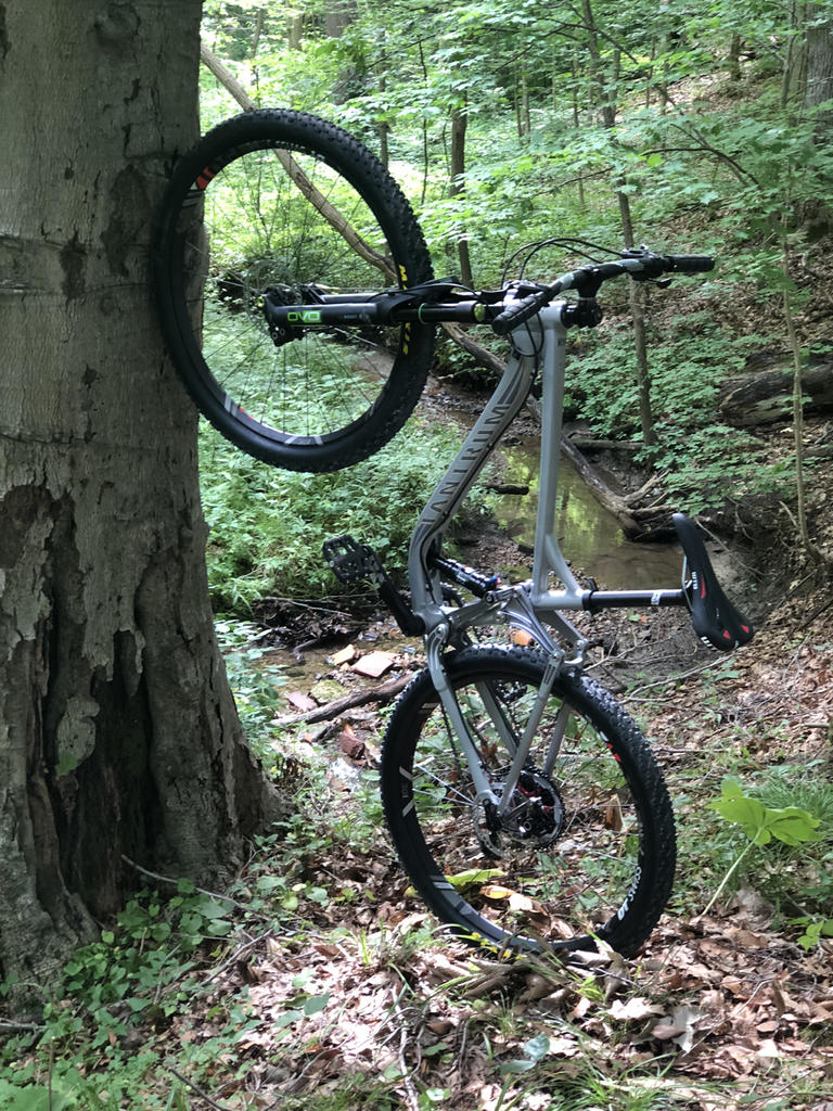 New innovative suspension from Tantrum Cycles. Any thoughts...-raw-barking-s.jpg