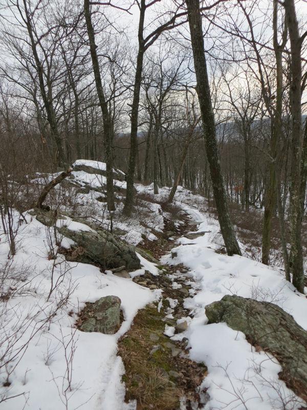Roaring Creek Snow-rct-1.jpg